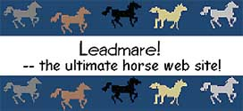 Leadmare !  -- the ultimate horse web site !